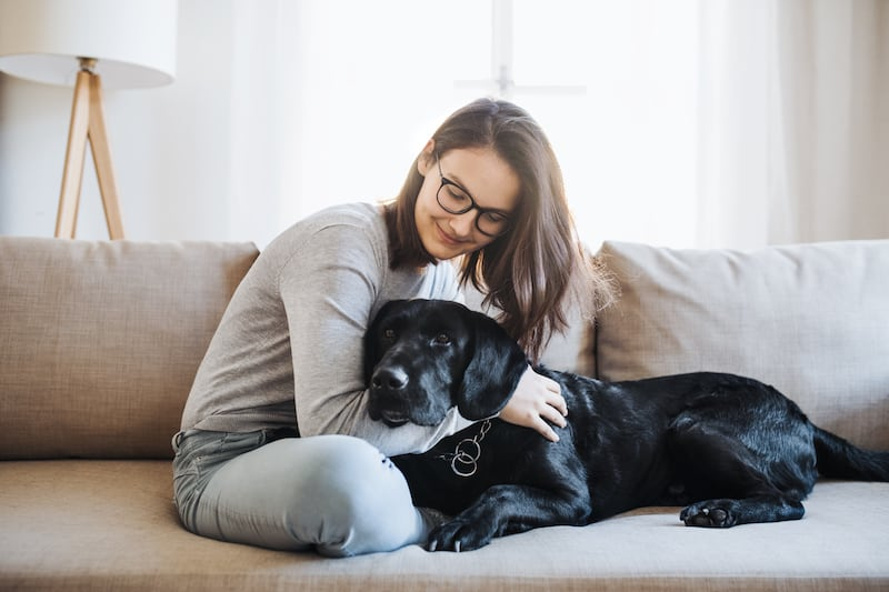 Why Hire A Professional Pet Sitter vs. Your Neighbor?