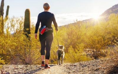 Best Practices for Safe Dog Walking during the Coronavirus Pandemic