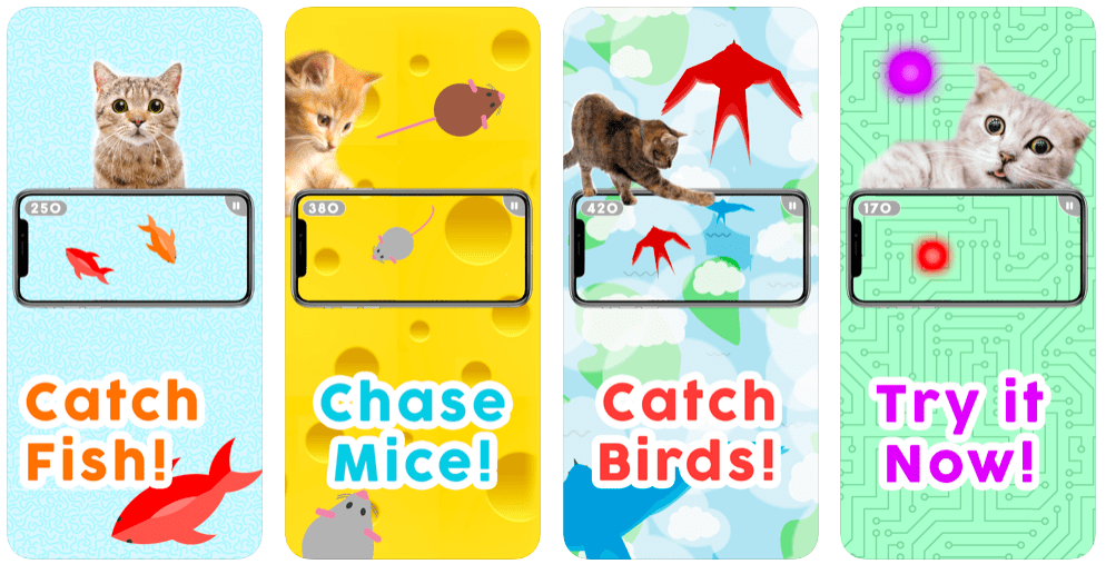 Games for Cats!